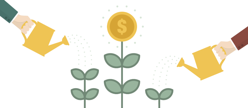 crowfunding flower