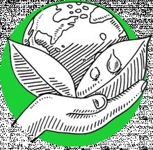 Citizenship icon (1.8)