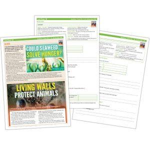 activity sheets seaweed
